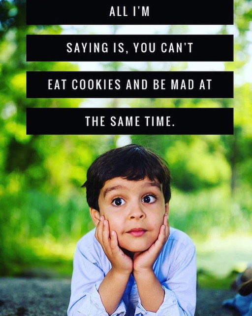 "Little boy with quote that says ""All I'm saying is, you can't eat cookies and be mad at the same time."""