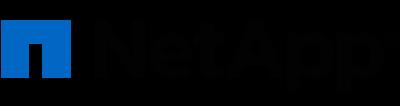 NetApp logo in black sans serif font alongside blue lowercase n